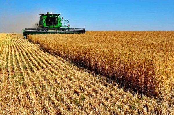 Çiftçi Desteğinin Şartları, Çiftçi Kredisi Alma